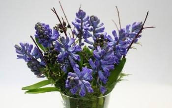 Cut flowers Delfts Blue